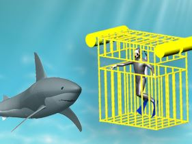 SOLIDWORKS Shark Cage Video